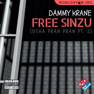 Dammy Krane aims to #FreeSinzu with New Single | Listen on BN