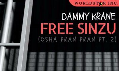 Dammy Krane aims to #FreeSinzu with New Single | Listen on BN