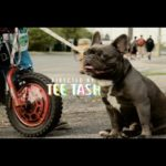 New Video: Skales - Kpete Wicked