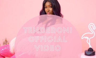 "Tolani Otedola releases music video for ""Tenderoni"" featuring Skales 
