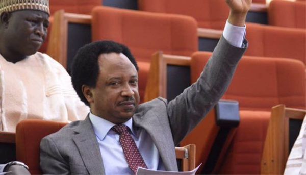 Senator Shehu Sani presents Snake Charmers & Repellants to JAMB - BellaNaija