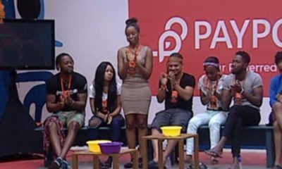 #BBNaija - Day 36: Life Goes On, BamBam Them Gang and More Highlights