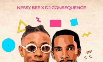New Music + Video: Nessy Bee x DJ Consequence - Don't Stop The Music