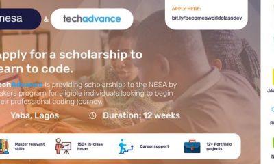 software engineering scholarship