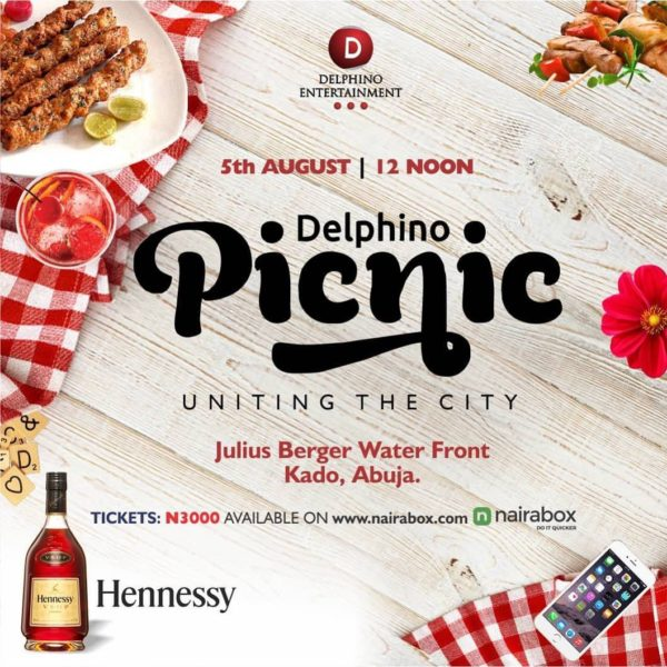 Delphino picnic banner